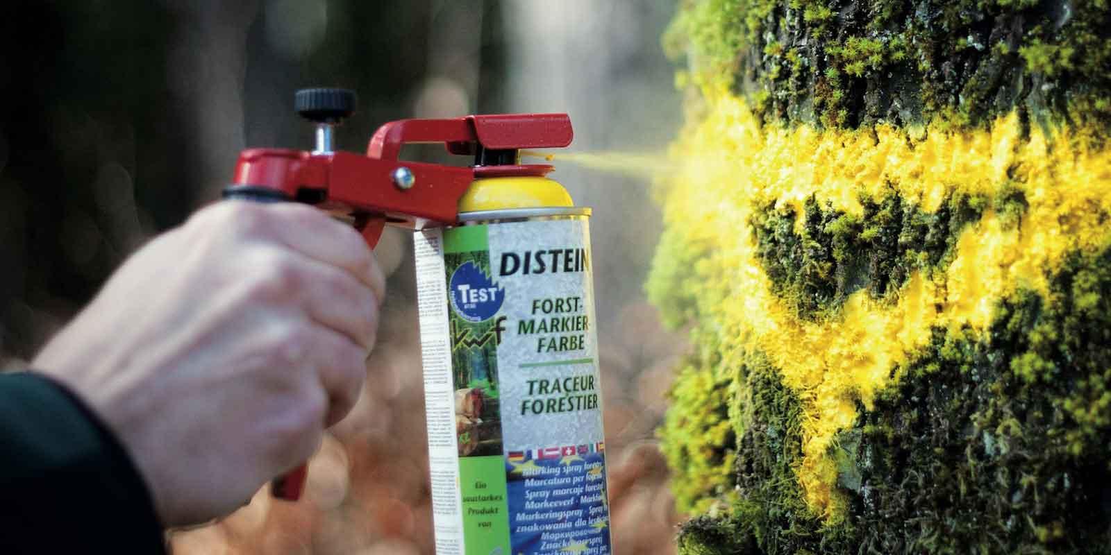 Farby w sprayu do znakowania drzew i drewna. Jak wybrać, jak stosować?
