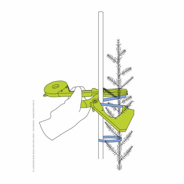 Sadzenie drzew bindownica