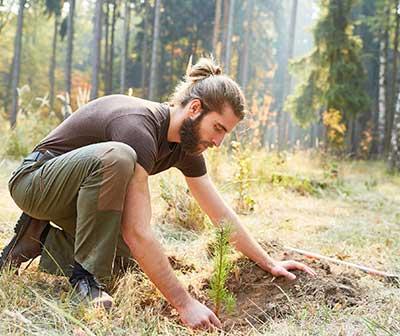 Sprzęt do sadzenia drzew
