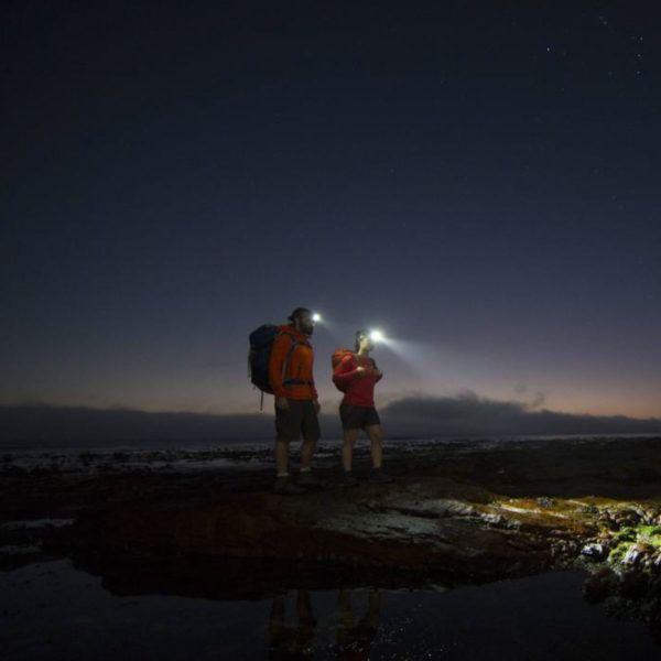 Sprzęt leśny - latarki ledlenser - latarka czołowa MH7